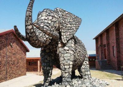 Elephant at Shobiyana
